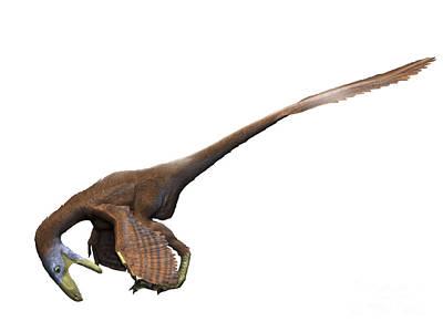 Deinonychus Dinosaur Poster by Nobumichi Tamura