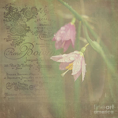 Delicate Blooms Poster by Sharon Elliott