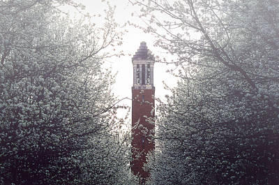 Denny Chimes Foggy Blossoms Poster