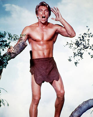 Denny Miller In Tarzan, The Ape Man  Poster by Silver Screen