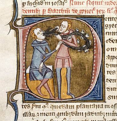 Dentistry, 14th-century Manuscript Poster by British Library