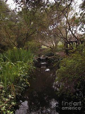 Descanso Gardens 2 Poster