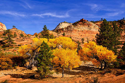 Poster featuring the photograph Desert Autumn by Greg Norrell