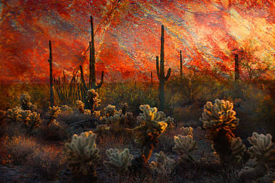 Desert Burn Poster by Barbara Manis