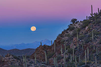 Desert Moonset Poster