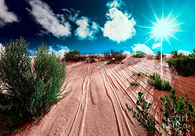 Desert Rays Poster