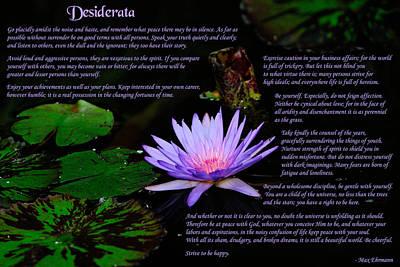 Desiderata 2 Poster