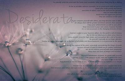 Poster featuring the photograph Desiderata - Dandelion Tears by Marianna Mills