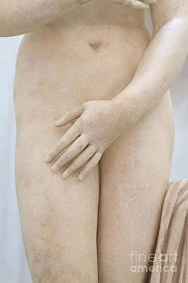 Detail Of The Statue Of The Capitoline Venus Poster by Roberto Morgenthaler