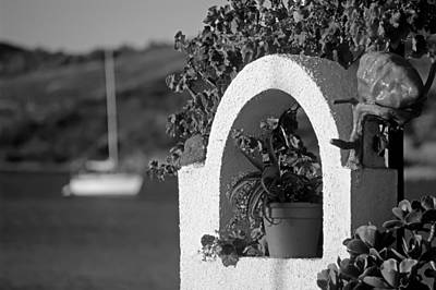 Details In Aegina Island Poster
