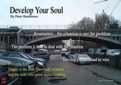 Develop Your Soul Poster