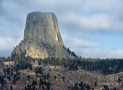 Devil's Tower - Wyoming Poster by Sandra Bronstein