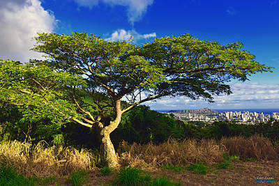 Poster featuring the photograph Diamond Head From Tantalus Drive by Aloha Art