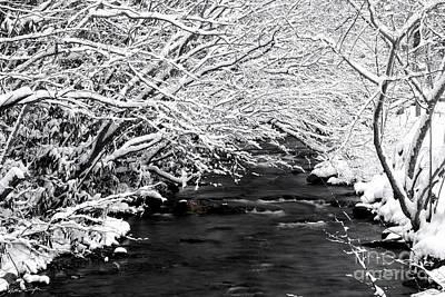 Dick's Creek Snow 2014 Poster