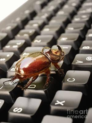Digital Bug Poster