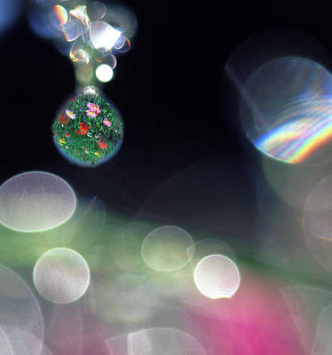 Digital Composite Abstract Of Dew Drops Poster