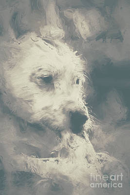 Digital Oil Painting Of A Cute Scruffy Dog  Poster by Jorgo Photography - Wall Art Gallery