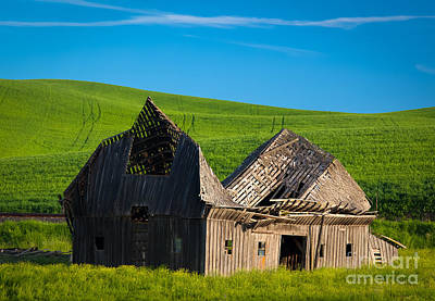 Dilapidated Barn Poster by Inge Johnsson