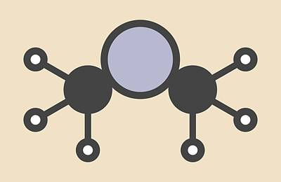 Dimethylmercury Molecule Poster by Molekuul