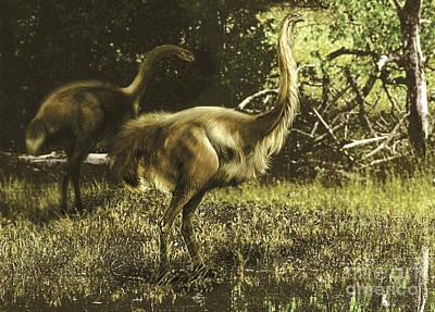 Dinornis Maximus Flightless Birds Poster by Jan Sovak