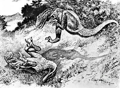 Dinosaurs Fighting Poster by Science Source