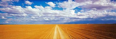 Dirt Road Amboseli Kenya Poster by Panoramic Images