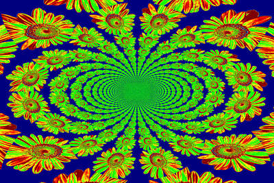 Poster featuring the photograph Dizzying Daisies 2 by Kelly Nowak