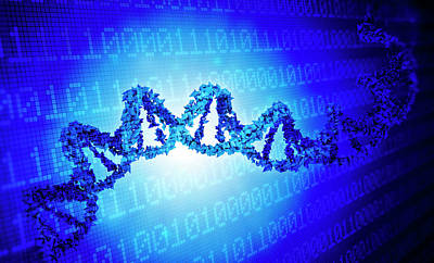Dna And Binary Code Poster