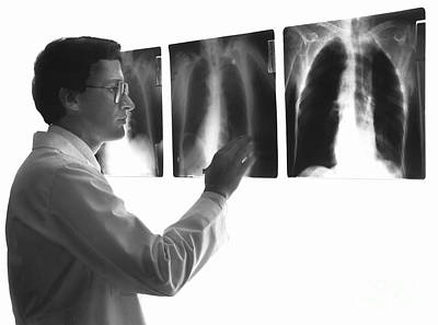 Doctor Studying X-rays Poster by Dennis Potokar