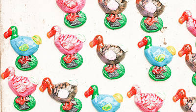 Dodo Souvenirs Poster by Tom Gowanlock