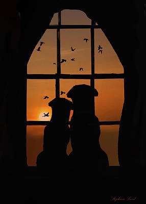 Dog Couple In Window Poster by Stephanie Laird