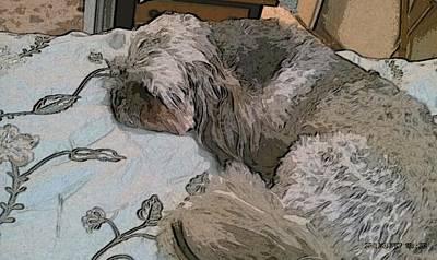 Doggie Nap Poster
