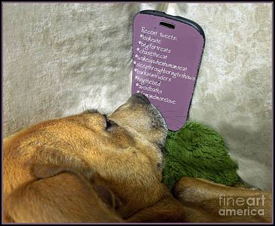 Doggy Hashtags Poster