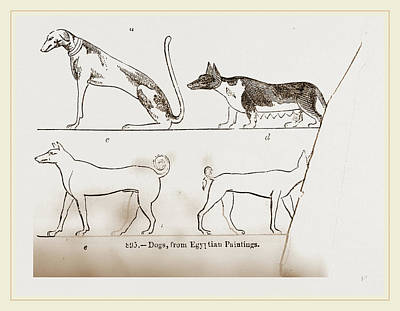 Dogs, From Egyptian Paintings Poster by Litz Collection