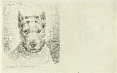 Dogs Head With Collar, Johannes Mock Poster by Johannes Mock