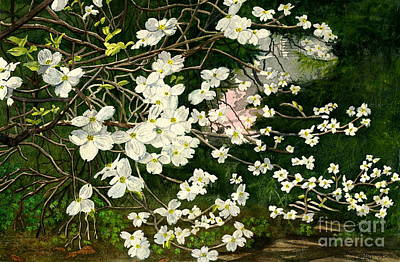 Poster featuring the painting Dogwoods Virginia by Melly Terpening