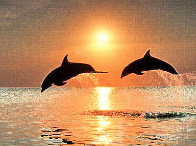 Dolphin Golden Sunset Poster by Cadence Spalding