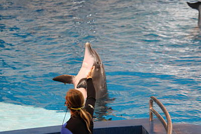 Dolphin Show - National Aquarium In Baltimore Md - 1212148 Poster by DC Photographer