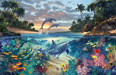 Dolphins Playground Poster by Steve Read