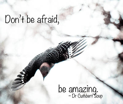 Poster featuring the photograph Don't Be Afraid by Kerri Farley