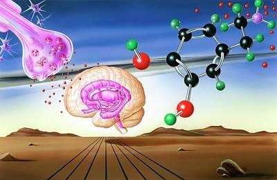 Dopamine Brain Chemistry Poster by John Bavosi
