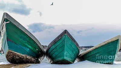 Dories And The Sea Gull Poster by Joe Faragalli