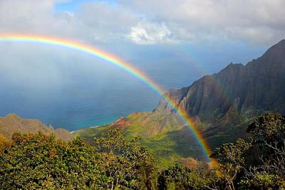 Double Rainbow In Paradise Poster by Tracey Rabjohns