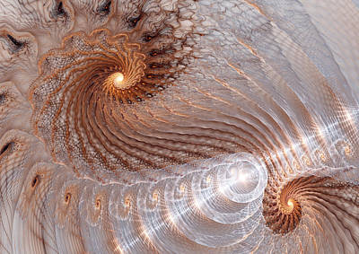 Double Swirl Poster by Martin Capek