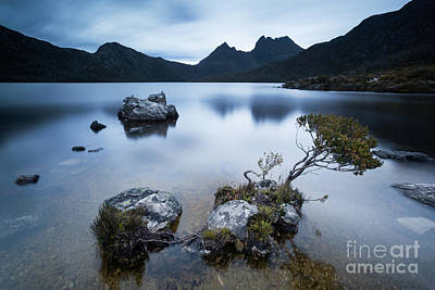 Dove Lake Cradle Mountain National Park Tasmania Australia Poster by Matteo Colombo