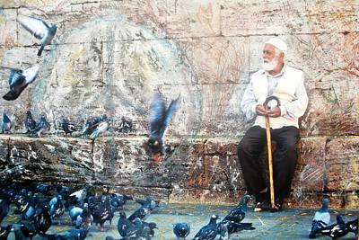 Poster featuring the photograph Doves Of Istanbul by Lesley Fletcher
