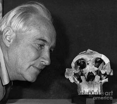 Dr. Louis Leaky With Zinjanthropus Skull Poster by Jen & Des Bartlett