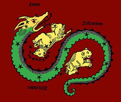 Draco, Ursa Major And Ursa Minor Poster