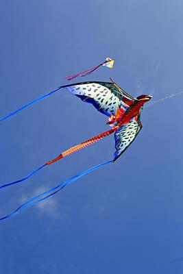 Dragon Kite 1 Poster by Patricia Sanders