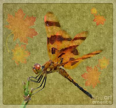 Dragonfly Art 14-3 Poster by Maria Urso
